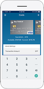 Illustration showing BayFedCards on mobile device screen